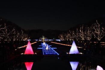 昭和公園イルミネーション1.jpg