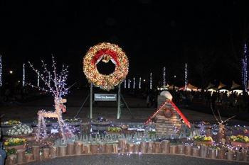昭和公園イルミネーション4.jpg