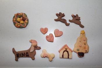 神戸のお土産クッキー.jpg