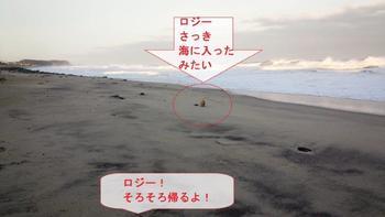 高浜4.jpg
