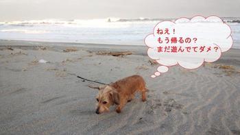 高浜8.jpg